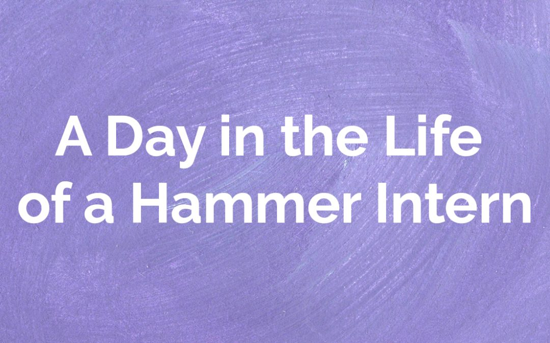 A Day in the Life of a Hammer Intern